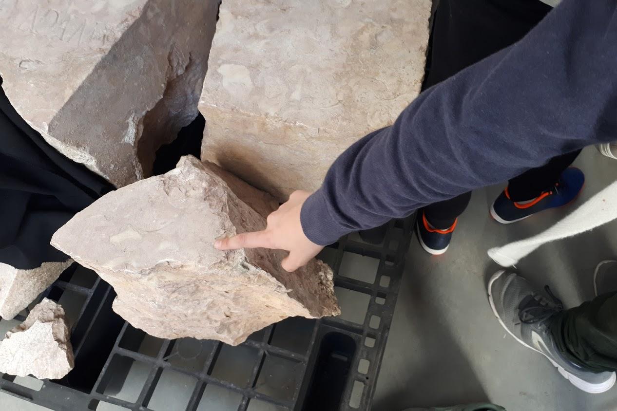 Mão de uma criança a tocar numa pedra