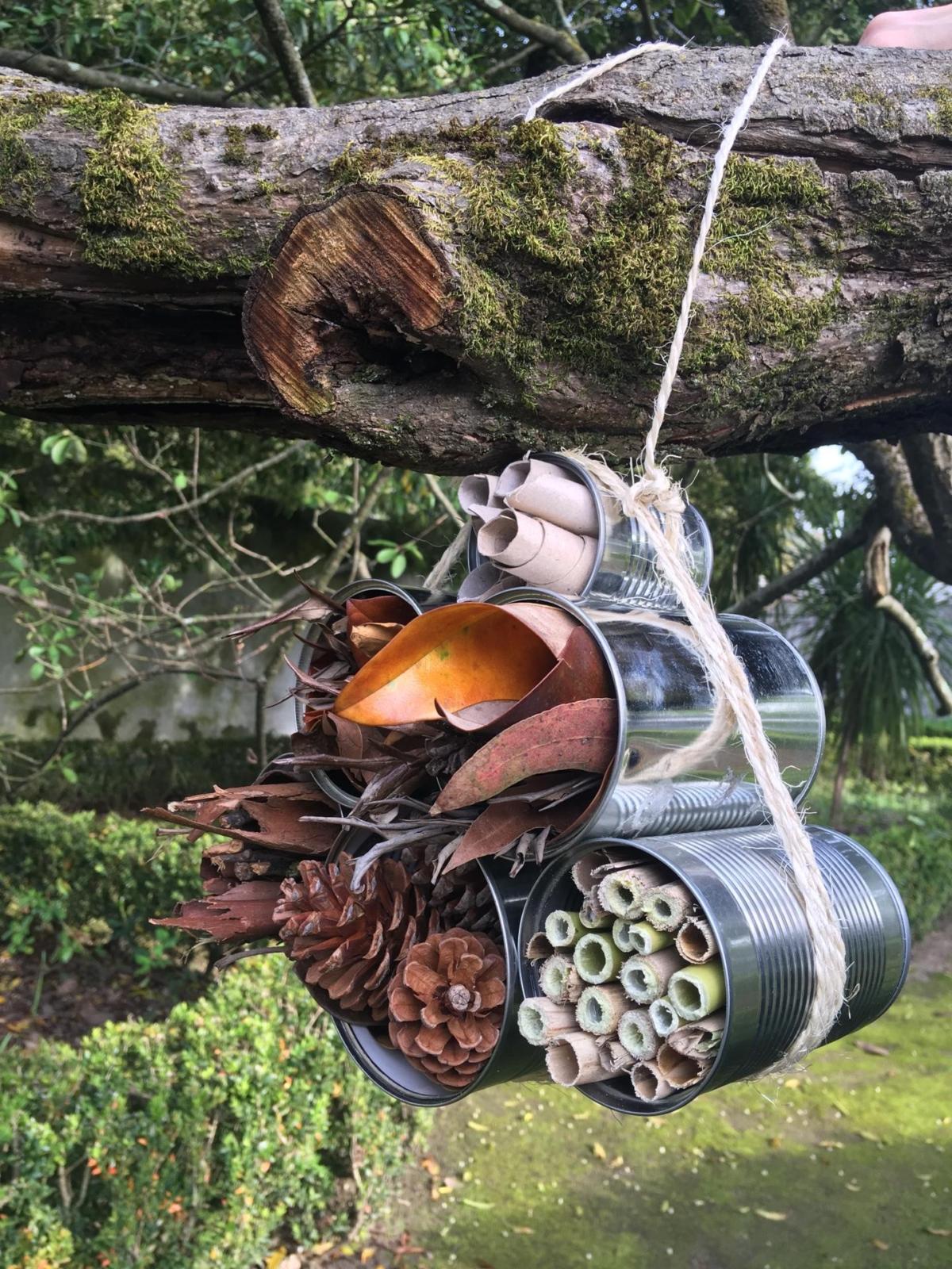 Varias latas com elementos da natureza presas por uma corda, suspensas numa árvore